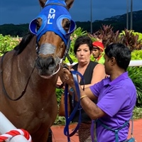 2019 SINGAPORE RACING SEASON CLOSES WITH LOGAN RACING HAVING 27 WINNERS