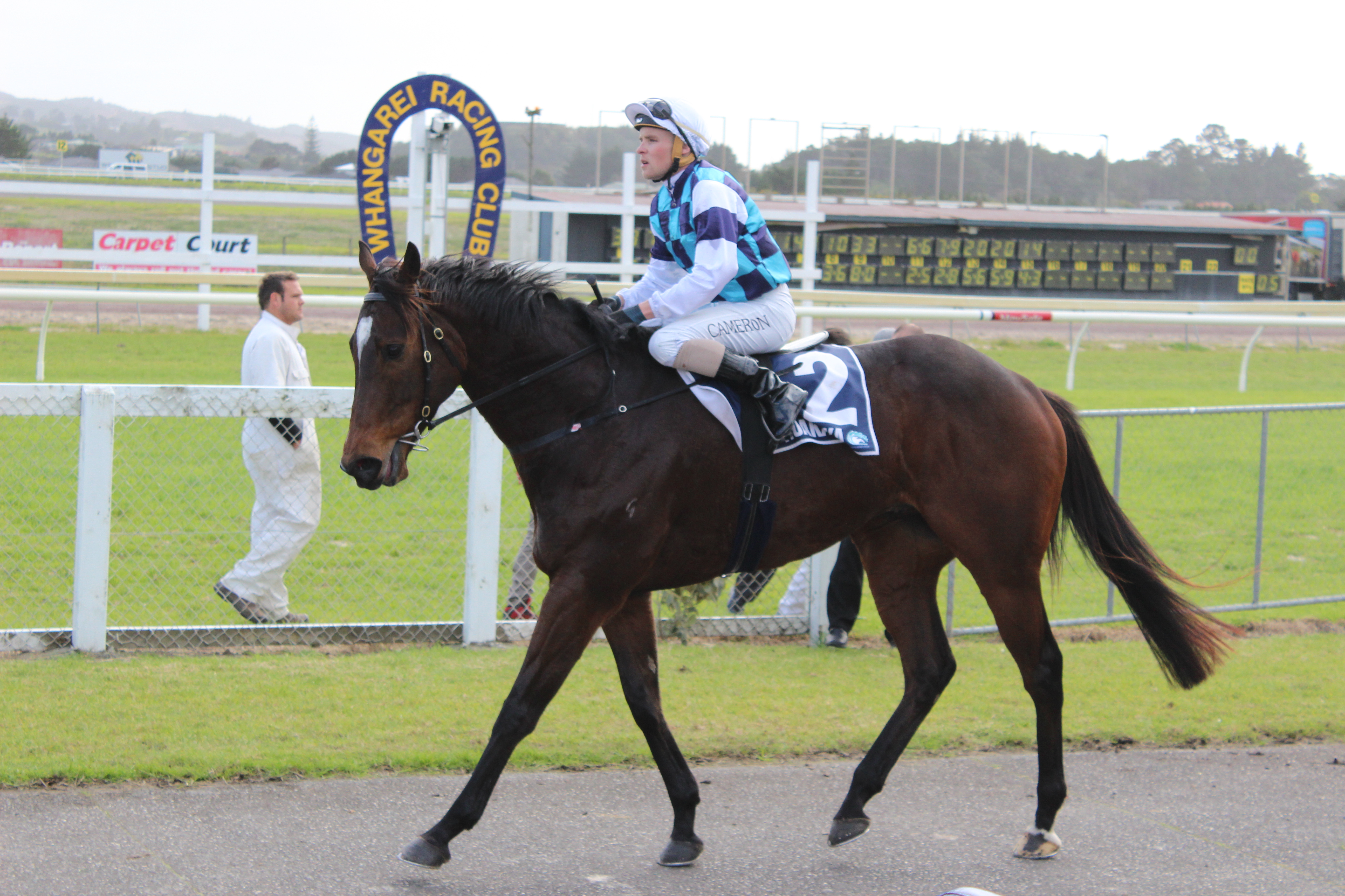 LOGAN RACING STARTERS AT RUAKAKA WEDNESDAY AUGUST 12TH