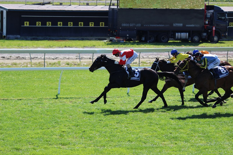 LOGAN RACING STABLES HAVE RUNNERS AT OTAKI AND MATAMATA ON SATURDAY 27TH FEBRUARY