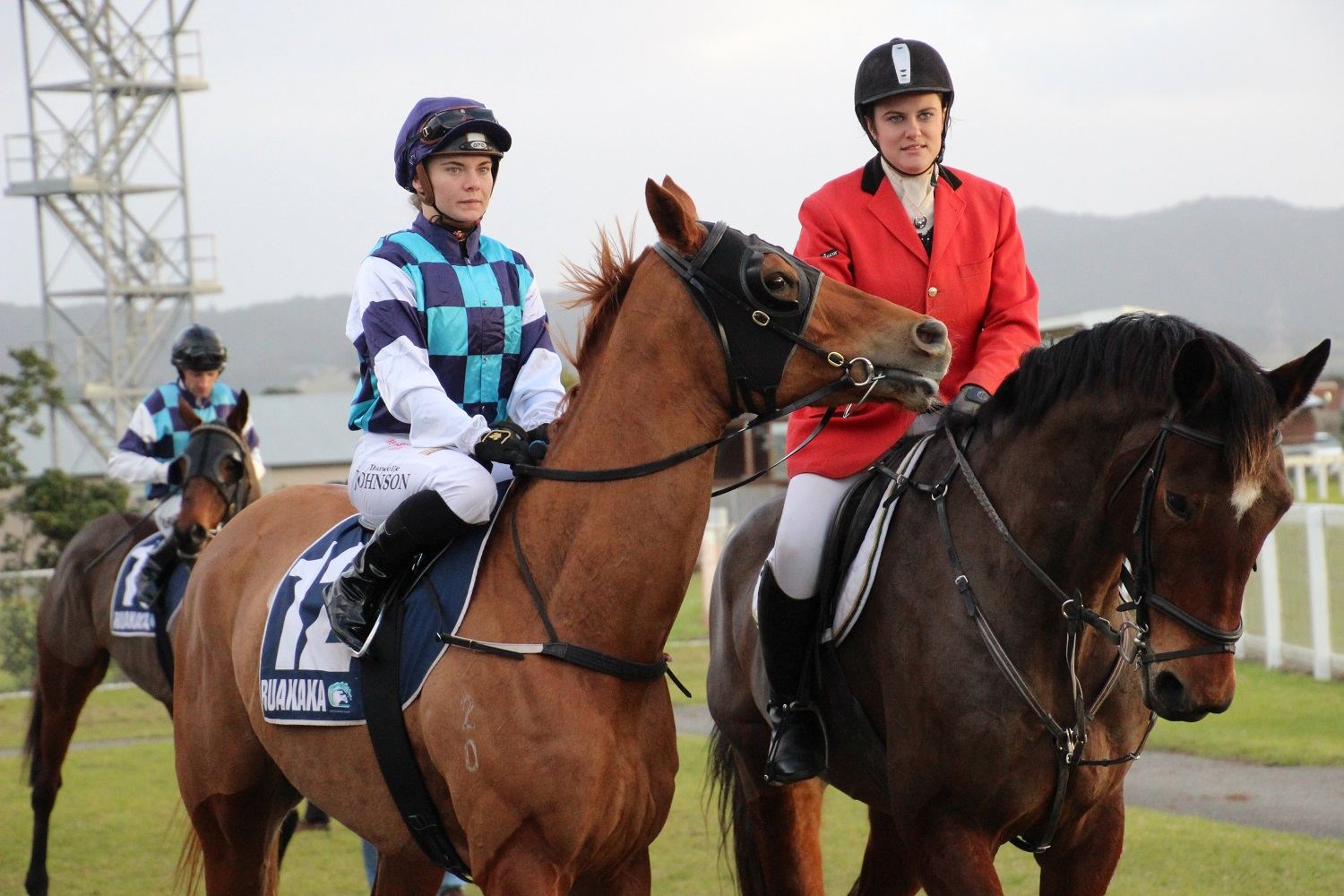 LOGAN RACING STABLES HAVE A BIG TEAM LINING UP AT RUAKAKA ON WEDNESDAY 28TH SEPTEMBER