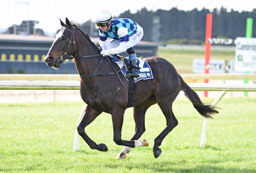 LOGAN RACING STABLES THURSDAY-25/04 RUNNERS PREVIEW